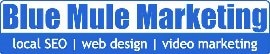 Blue Mule Marketing Plano logo